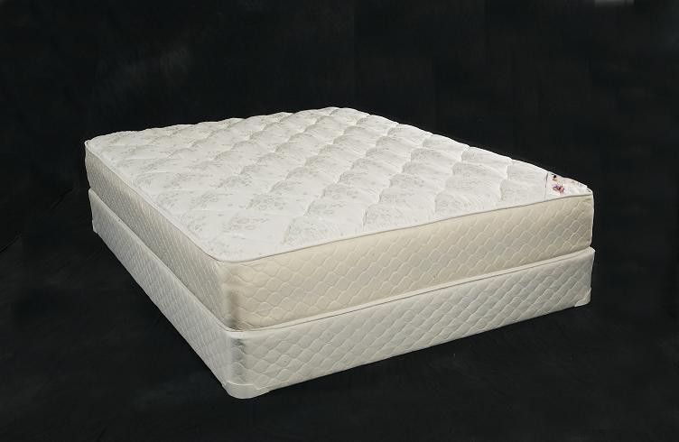 Legacy Mattress and Foundation - Queen