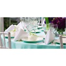 Table Linens and Skirting